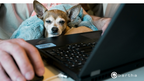 Avoid the Virtual Meeting Hangover